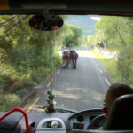 The view from the front of our CIE coach on the Ring of Kerry. All photos: Tara Dougherty and Sheila Langan.
