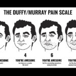 The Duffy / Murray pain scale.